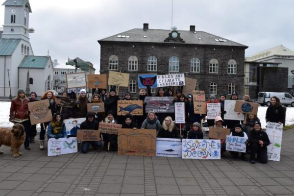 Whale protest: the Maritime Executive article