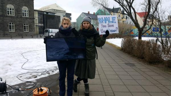 Whale protest: Sea Shepherd Iceland video