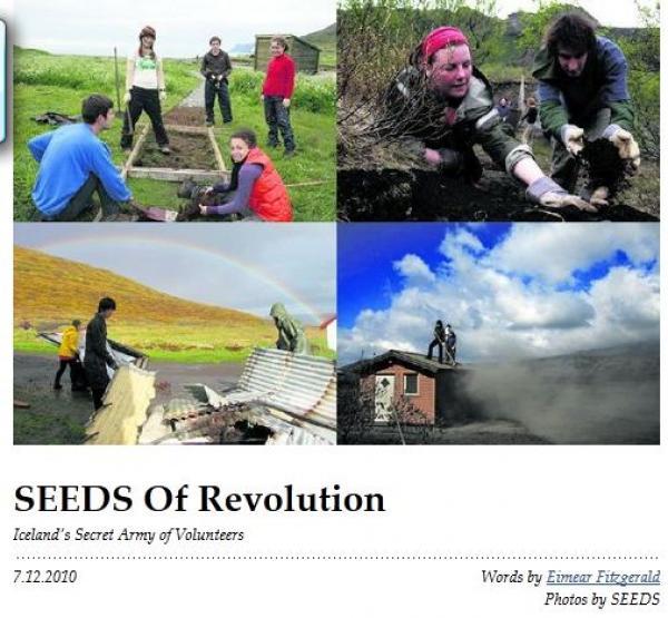 Grapevine - SEEDS of Revolution