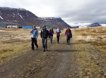 Ísafjarðardjúp: Nature & Fun in the Westfjords (2:3)