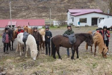 Lambing season in Skagafjörður