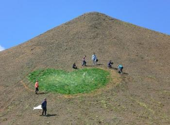 Revegetation in the south of Iceland (1:2)