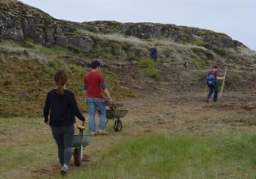 SEEDS 059. Revegetation in the south of Iceland (2:2)