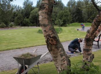 Botanic Garden in Reykjavík (7:9)
