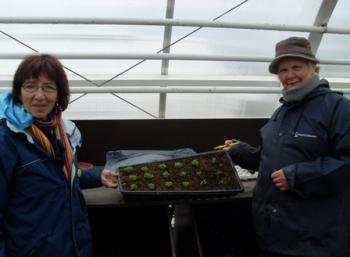 Botanic Garden in Reykjavík: Senior Camp (8:10)