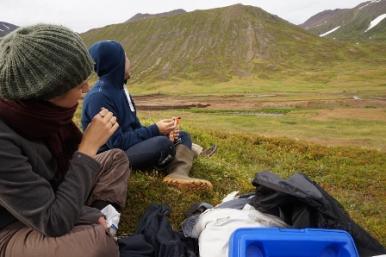 Tálknafjörður in the West fjords (4:4)