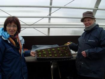 Botanical gardens in Reykjavik 50+ (7:9)
