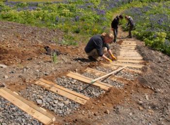 Repairing tracks in Dalir - Sagaland (1:2)