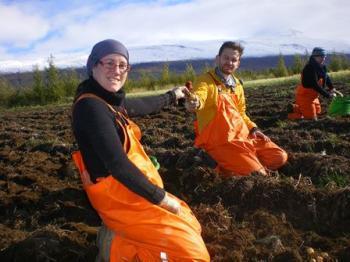Organic Farming in Iceland (1:2)
