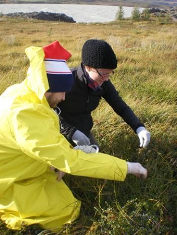 Organic Farming in Iceland (2:2)