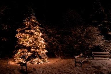 Christmas & Aurora Hunting Photo Marathon