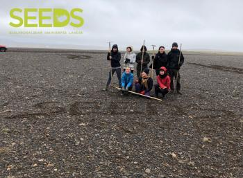 Revegetation in the South-west of  Iceland (3/3)