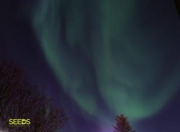 Photography, Aurora hunting & Design festival
