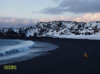 Environment & Photography - November