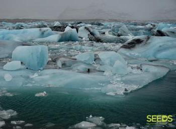 Environment & Photography - New Year Reykjavík