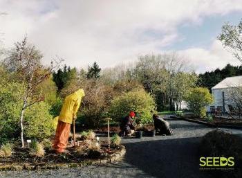 Botanical gardens in Reykjavik (2:9)