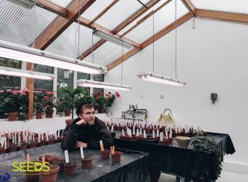Botanical gardens in Reykjavik (8/9)