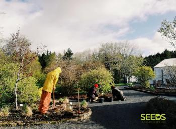 Botanical gardens in Reykjavik (2/9)