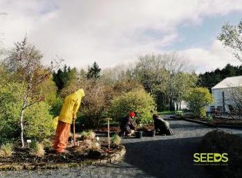 Botanical gardens in Reykjavik (6:9)