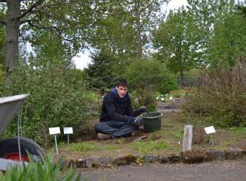 Botanic Garden in Reykjavík (5:10)