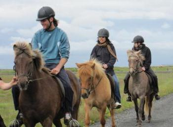 Working & Horseback riding in the North