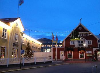 Environmental Christmas & Red Cross in Reykjavík