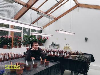 Botanical gardens in Reykjavik 40+ (8:9)