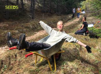 Forestry & hiking trails in the West