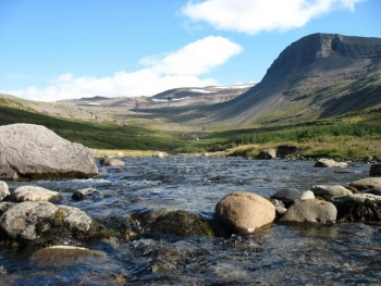 Patreksfjörður - Unique West fjords