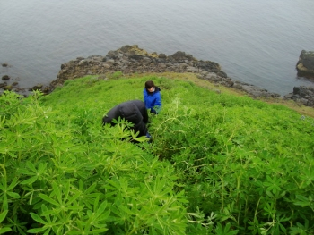 Icelandic Natural Heritage in the far East