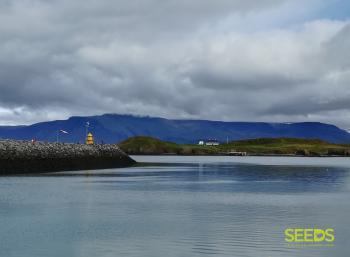 Island of Viðey (1:2)